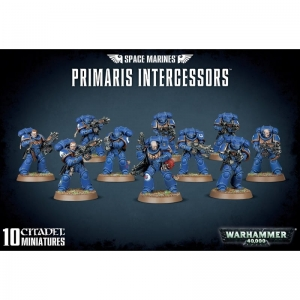 48-75-99120101190-Space Marines Primaris Intercessors